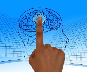 Programmazione Neuro Linguistica, tra clinica e coaching