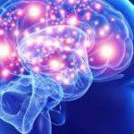 Quali aree del cervello sono coinvolte nel PTSD